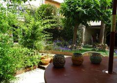 A vendre Saint Andre De Sangonis 343593274 Senzo immobilier
