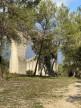 A vendre  Castries   Réf 343594058 - Senzo immobilier