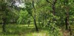 A vendre  La Boissiere | Réf 343594771 - Senzo immobilier