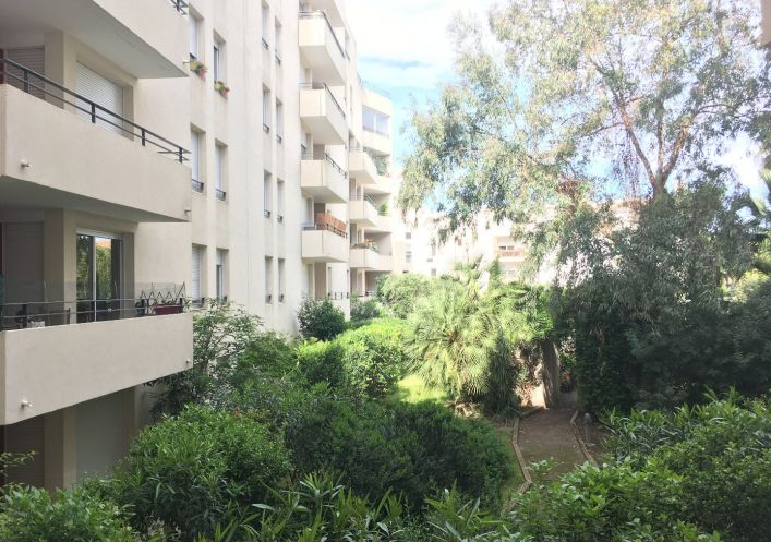 A louer Montpellier 343701348 M&b immobilier