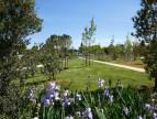 A vendre  Montpellier | Réf 343726752 - Immobis