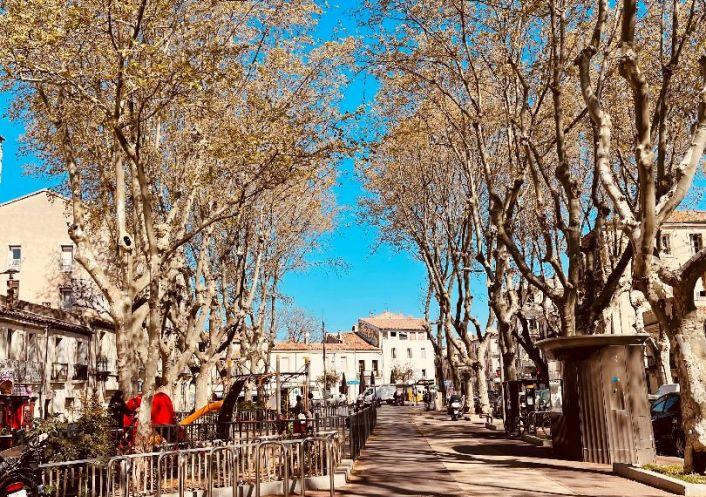 A louer Appartement Montpellier | Réf 343736452 - Immobis
