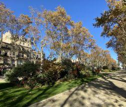 A louer  Montpellier | Réf 343737042 - Inter media