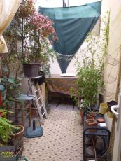 A vendre Montpellier 343776375 Immo 5