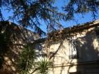 A vendre Nimes 3438020597 Comptoir immobilier de france