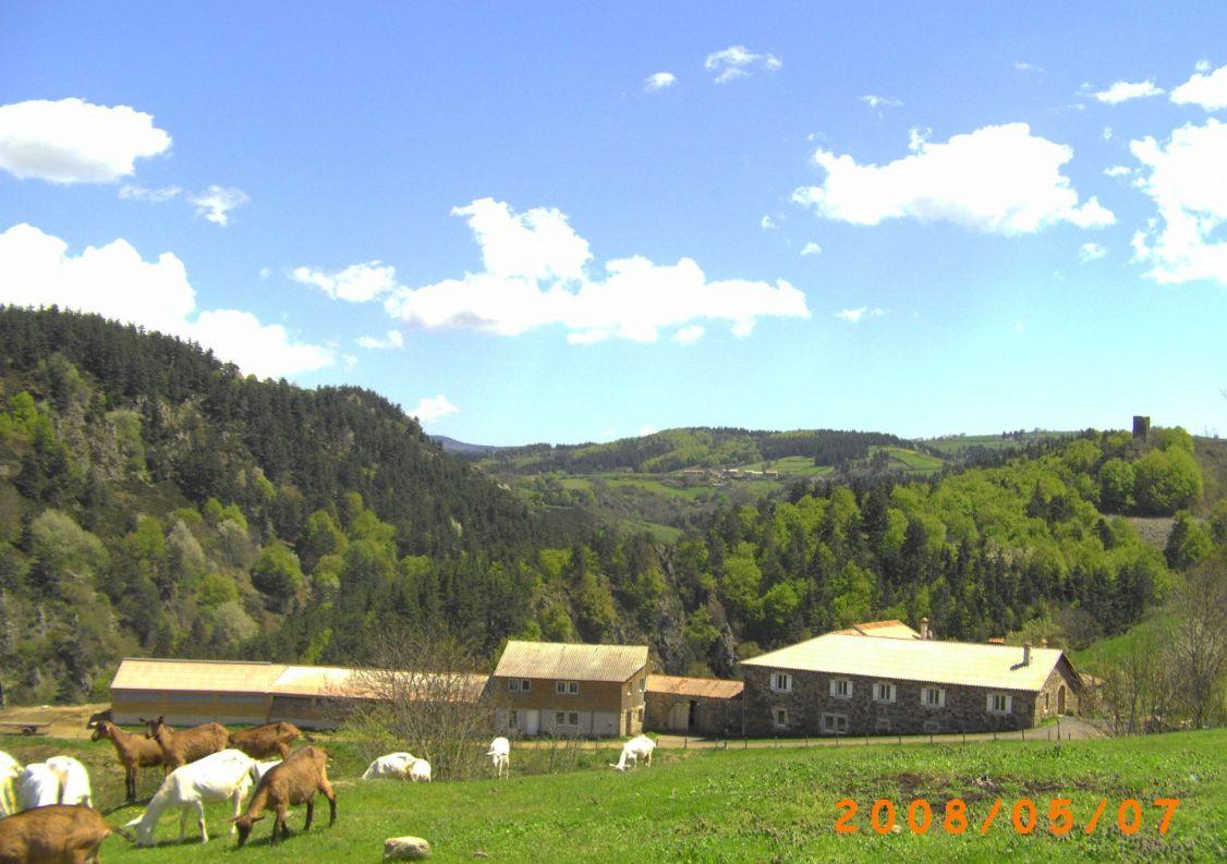A vendre Le Puy En Velay 3438037254 Comptoir immobilier de france