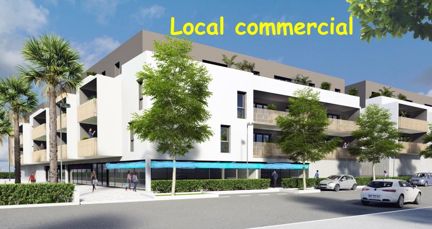 A vendre Lunel Viel 3438042409 Comptoir immobilier de france