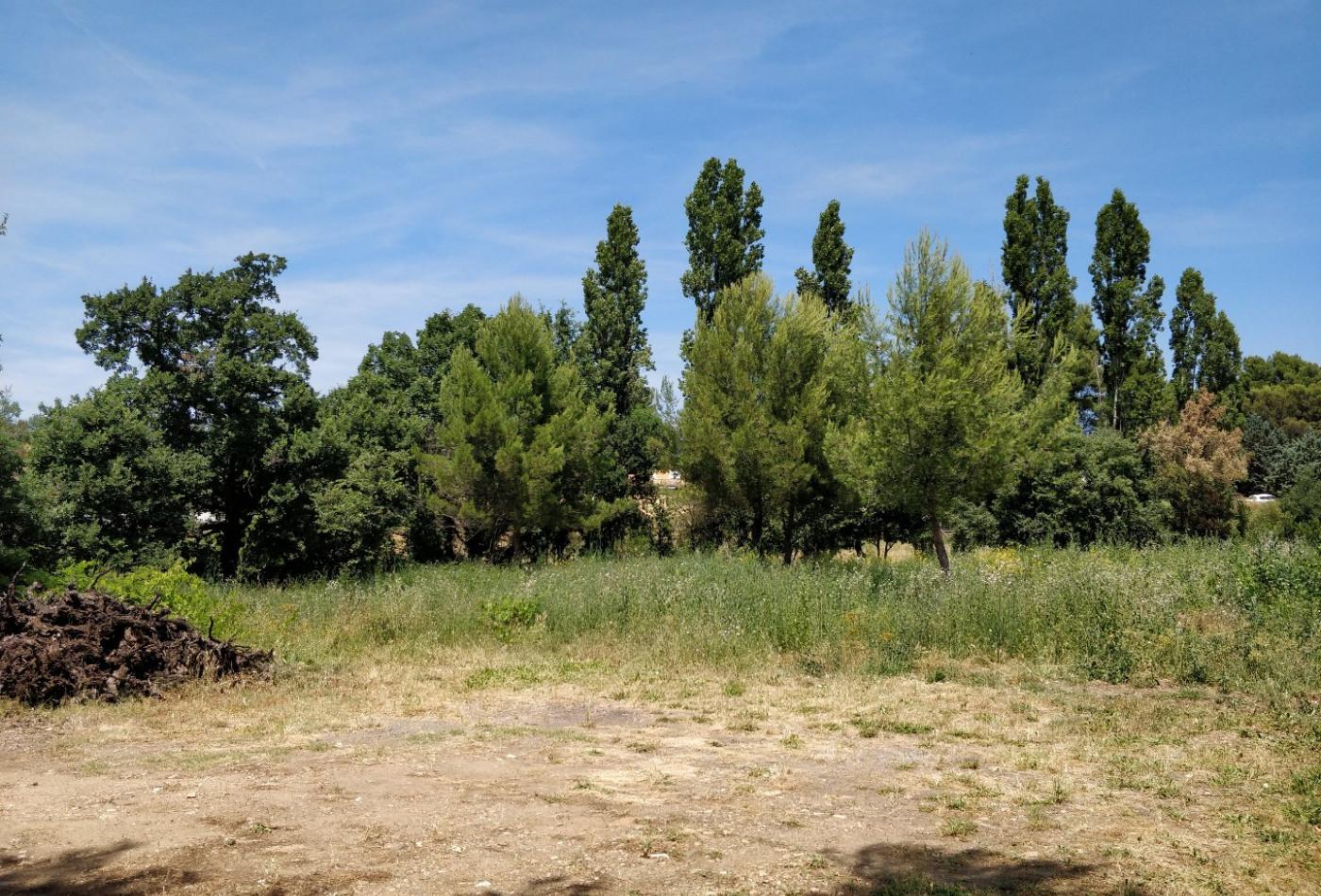 A vendre Murviel Les Beziers 343901025 Lamalou immobilier