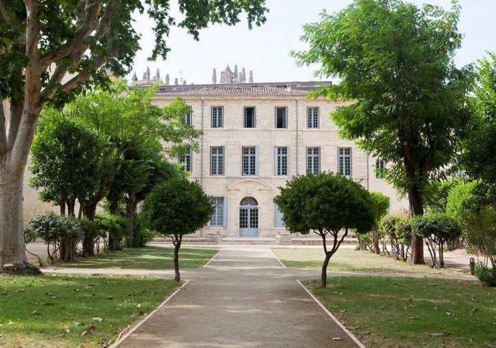 For rent Montpellier 343911047 Msc immobilier