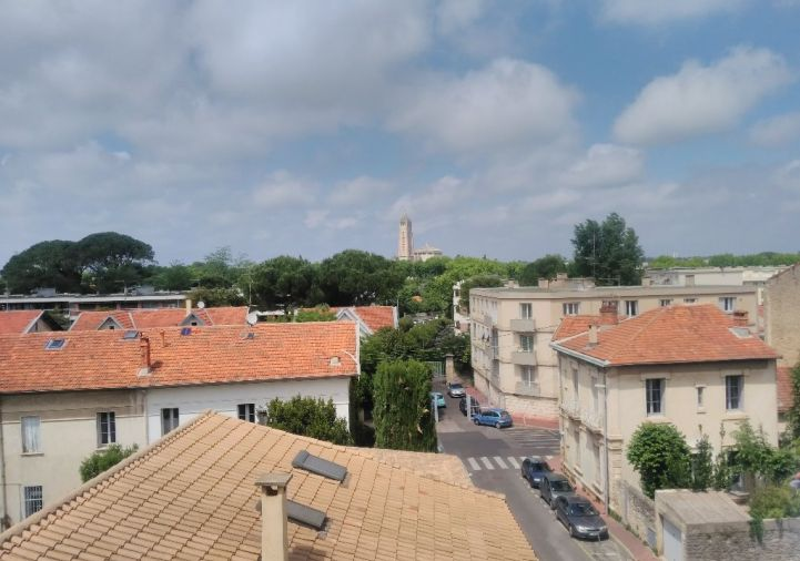 For rent Montpellier 343911132 Msc immobilier