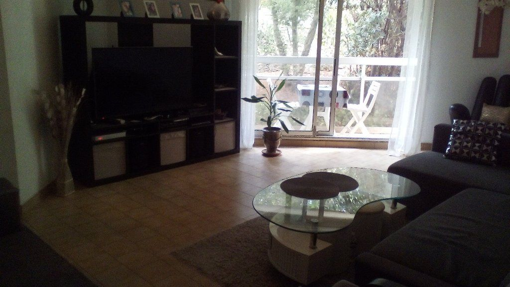 A louer Montpellier 343911175 Msc immobilier