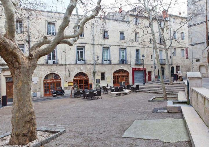 A louer Montpellier 343911303 Msc immobilier