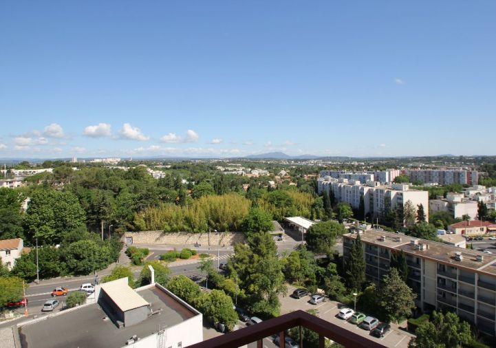 A louer Montpellier 343911318 Msc immobilier