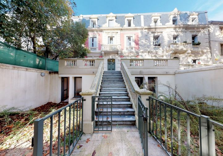 A louer Montpellier 343911414 Msc immobilier
