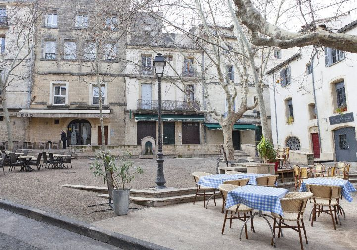 A louer Montpellier 343911474 Msc immobilier