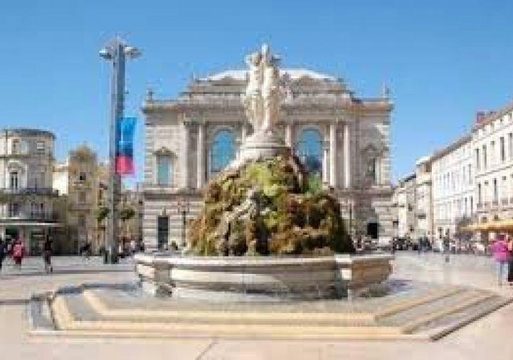 A vendre Montpellier 343911596 Msc immobilier
