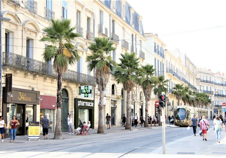 A vendre Montpellier 343911605 Msc immobilier