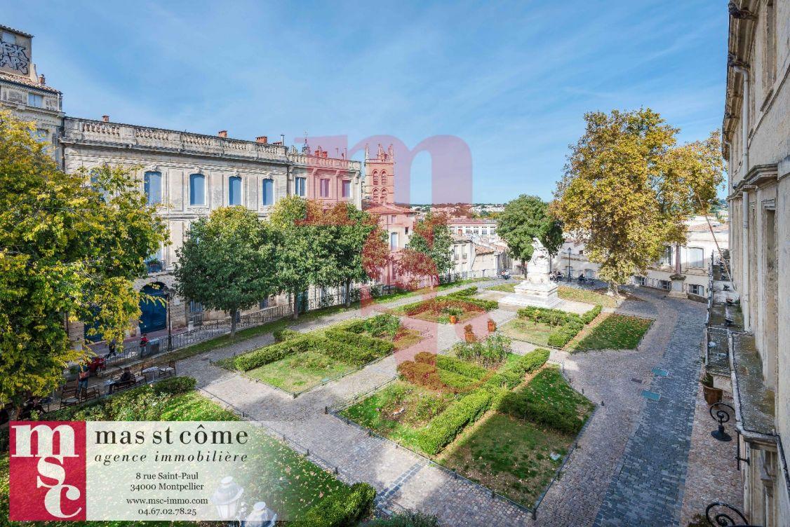 A vendre Appartement neuf Montpellier | Réf 343911747 - Msc immobilier