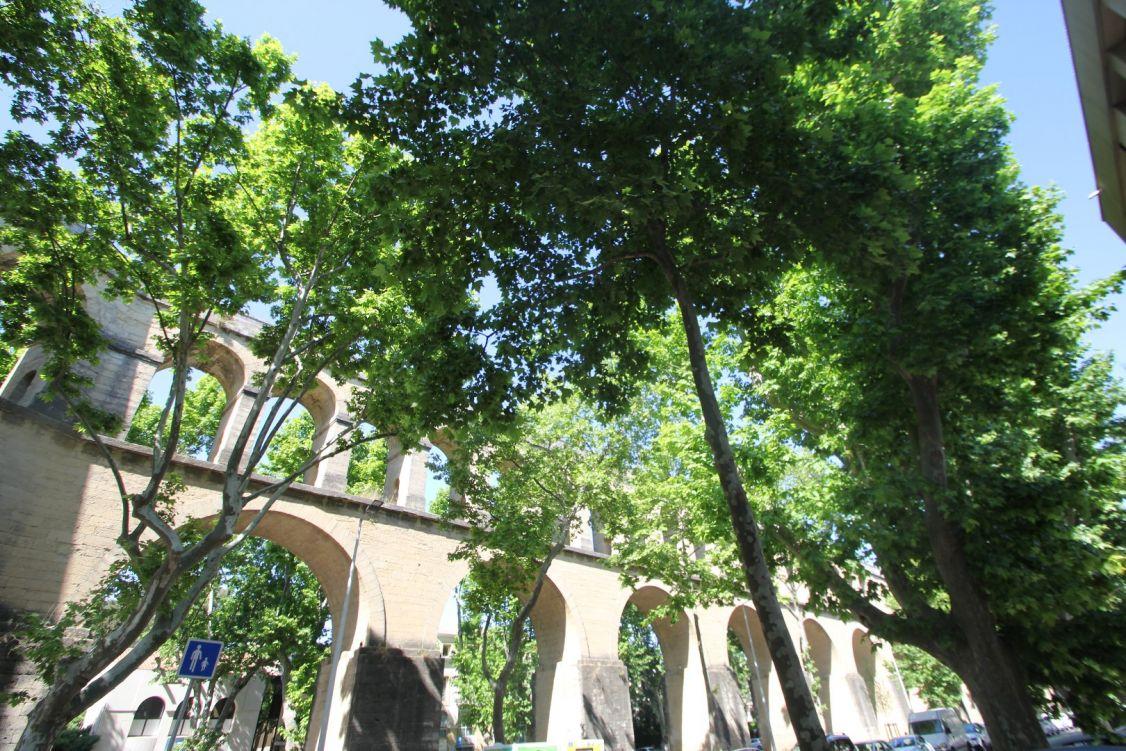 A vendre Maison de ville Montpellier   Réf 343911757 - Msc immobilier