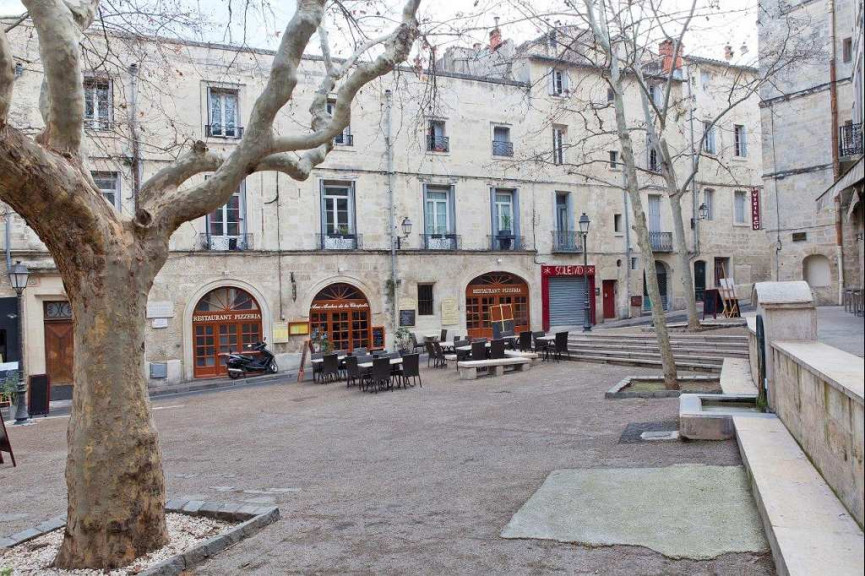 A louer Montpellier 34391666 Msc immobilier