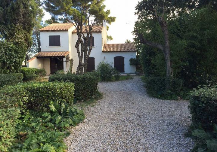 A louer Montpellier 34391864 Msc immobilier