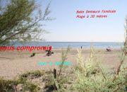 A vendre Frontignan  34396394 Bord de mer immobilier
