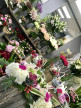 A vendre Saint Gely Du Fesc 344166598 Immovance