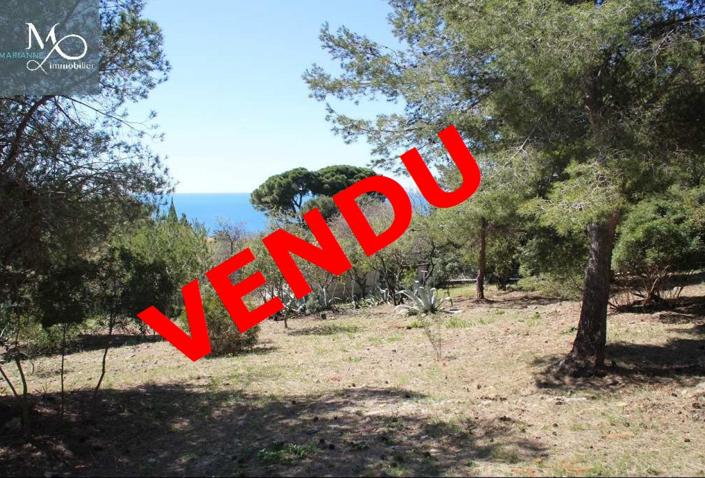 A vendre Sete 344175664 Marianne immobilier