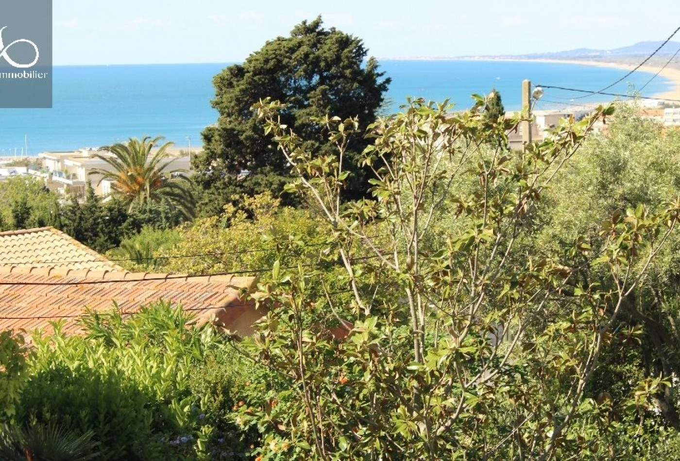 A vendre Sete 344175935 Marianne immobilier