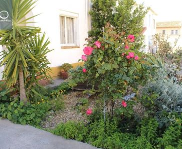 For sale Sete  344176063 Marianne immobilier