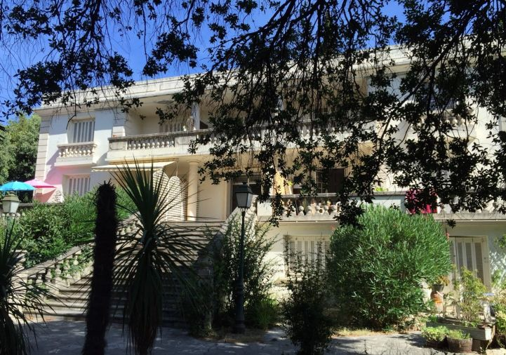A louer Montpellier 3442033782 Chatenet immobilier