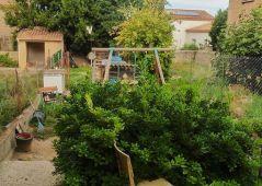 A vendre Castelnau De Guers 34424829 Agence guy