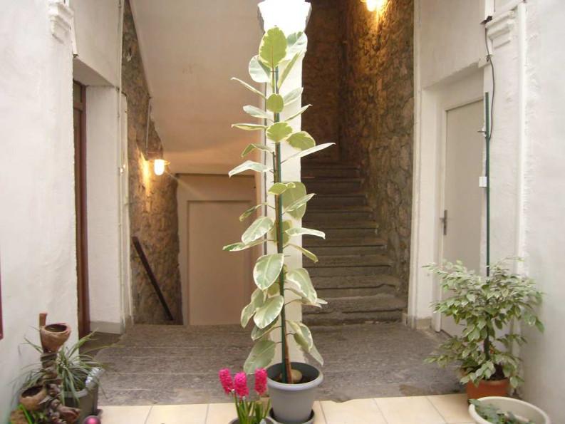 A vendre Agde 34442327 Le boulevard de l'immobilier