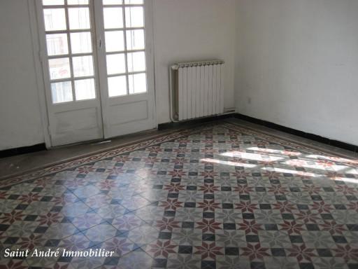A vendre Saint Andre De Sangonis 344511115 Saint andré immobilier