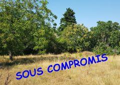 A vendre Saint Andre De Sangonis 344511257 Saint andré immobilier