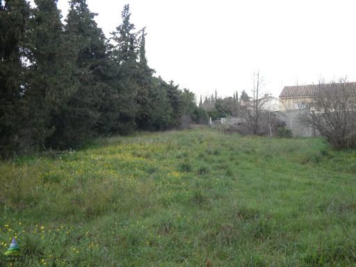 A vendre Saint Andre De Sangonis 344571366 Saint andré immobilier