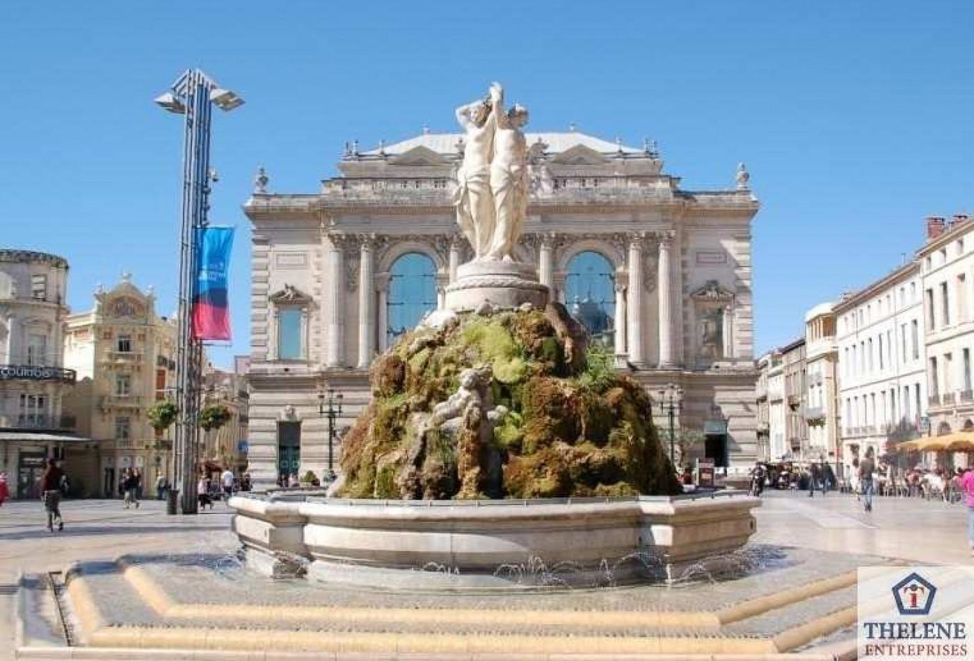 A vendre Montpellier 3448212903 Immobilier entreprises