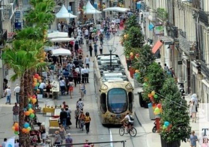 A vendre Montpellier 3448215455 Immobilier entreprises