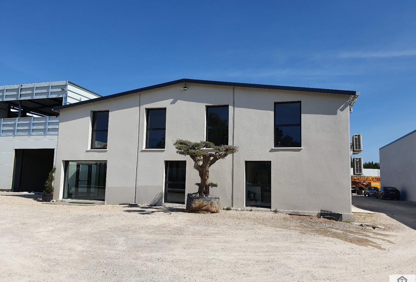 A louer Saint Jean De Vedas 3448216748 Immobilier entreprises