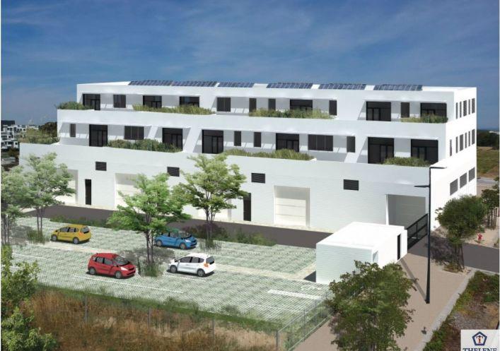 A louer Locaux d'activité Castelnau Le Lez   Réf 3448217227 - Immobilier entreprises