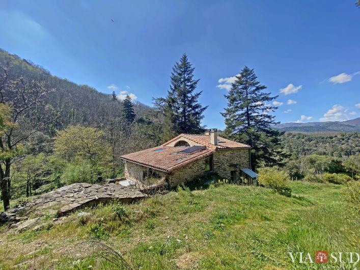 A vendre Propri�t� Saint Gervais Sur Mare | R�f 344852833 - Via sud immobilier