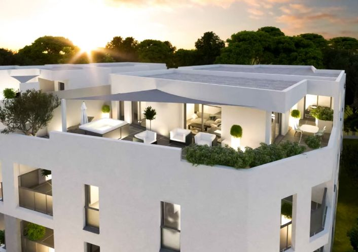 A vendre Montpellier 34505749 Pierre blanche immobilier