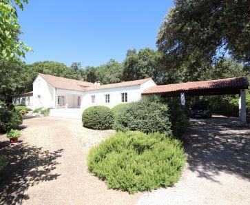 A vendre Castries 34505776 Pierre blanche immobilier