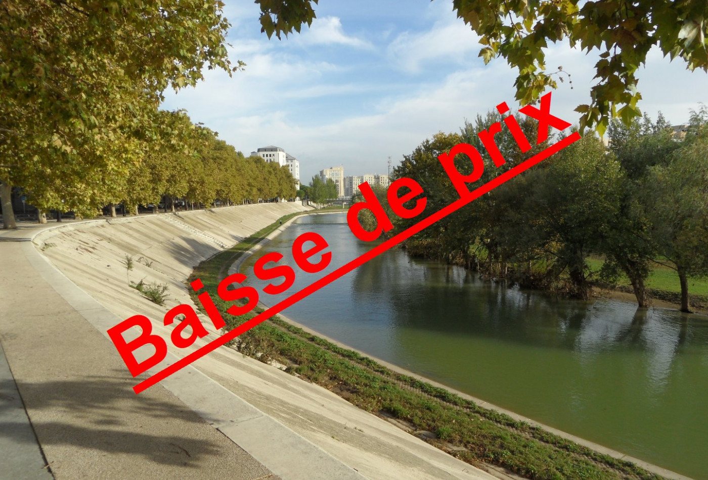 A vendre Montpellier 345075031 Immo plus