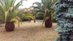 A vendre  Pomerols | Réf 345151058 - Rodriguez immobilier