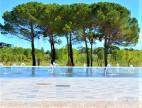 A vendre Montpellier 345335301 Adaptimmobilier.com