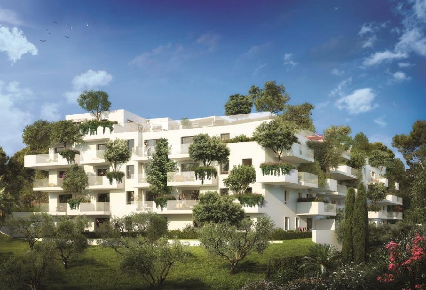 A vendre Montpellier 345335327 Argence immobilier