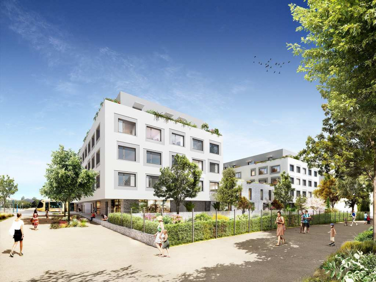 A vendre Montpellier 3453538 Yn patrimoine
