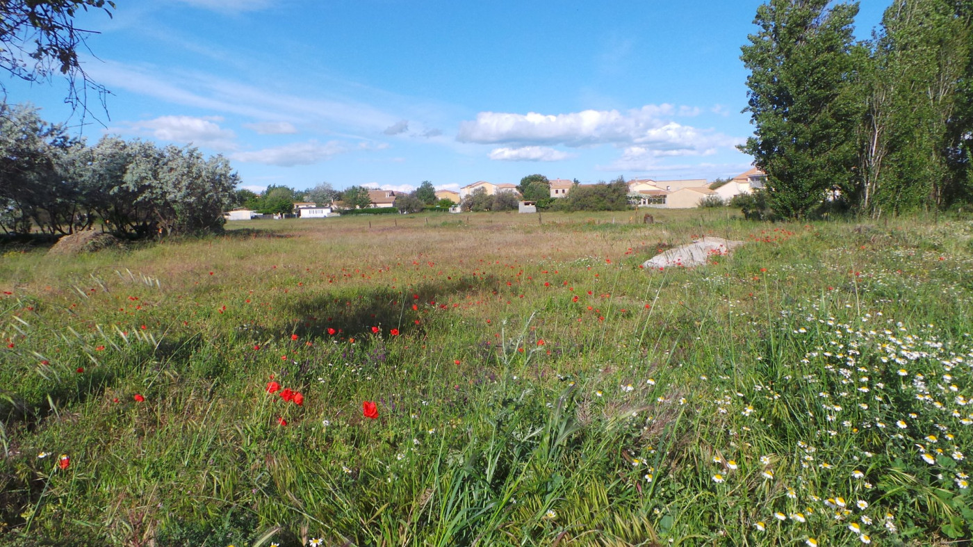 A vendre Valras-plage 345391219 Vives immobilier