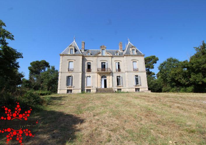 A vendre Château Montady | Réf 345392298 - Vives immobilier